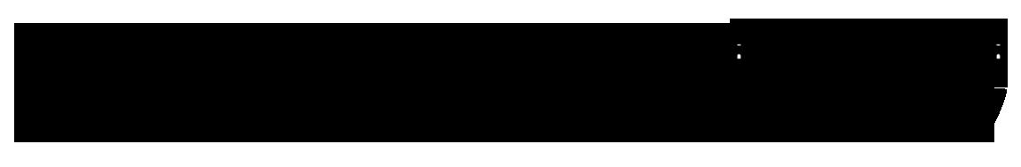 christine forster logo